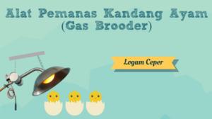 Alat Pemanas Kandang Ayam (Gas Brooder)